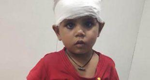 3 वर्षीय बालक नाले में गिरा, युवती ने बचाई जान