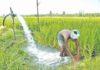 राज्य के किसानों को दिन में भी थ्री-फेज बिजली मिलेगी